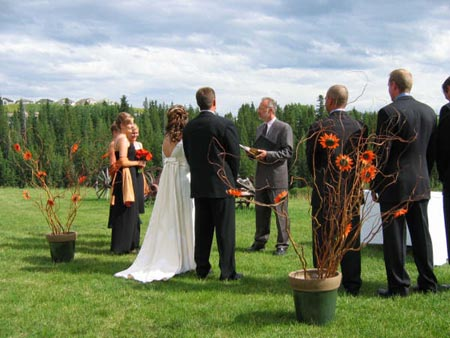 how to become a wedding officiant in alberta